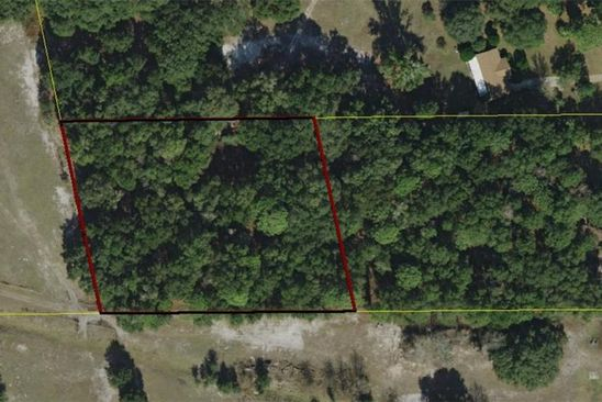 null bed null bath Vacant Land at  Fl Lake Panasoffkee, FL, 33538 is for sale at 45k - google static map