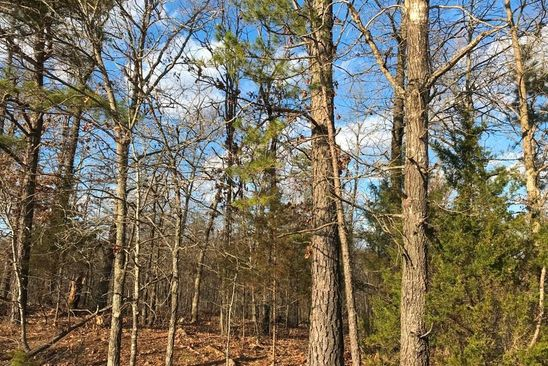 null bed null bath Vacant Land at 0 Raccoon Ln Poplar Bluff, MO, 63901 is for sale at 35k - google static map