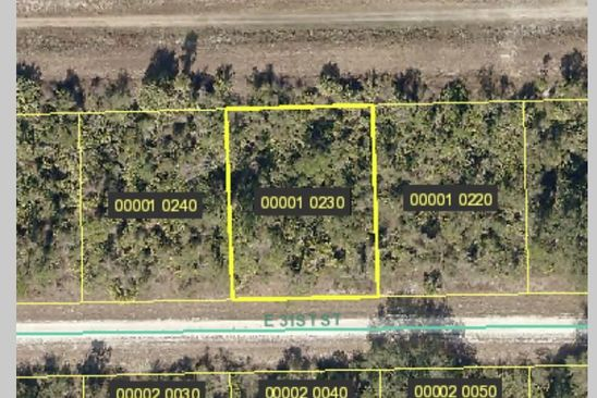 null bed null bath Vacant Land at 4195 E 31ST ST ALVA, FL, 33920 is for sale at 3k - google static map