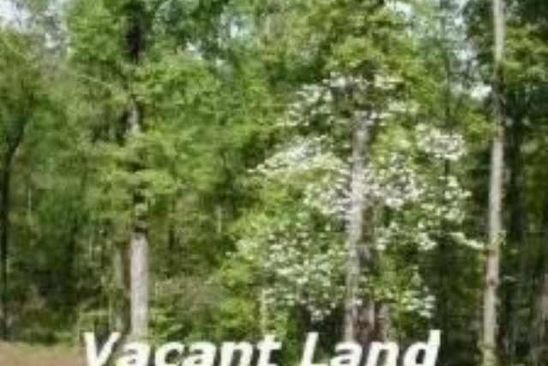 null bed null bath Vacant Land at  Tract 6 Linda Mountain View, AR, 72560 is for sale at 115k - google static map