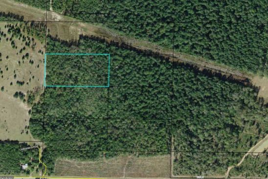 null bed null bath Vacant Land at 00 Walter Potts Rd Altha, FL, 32421 is for sale at 13k - google static map