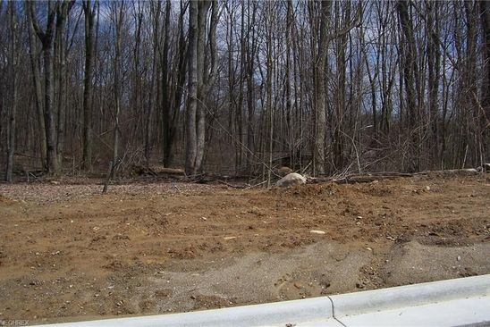 null bed null bath Vacant Land at 174 Hawkins Ln Columbiana, OH, 44408 is for sale at 32k - google static map