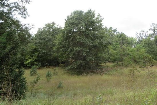 null bed null bath Vacant Land at 155 N Lester Ave White Cloud, MI, 49349 is for sale at 25k - google static map
