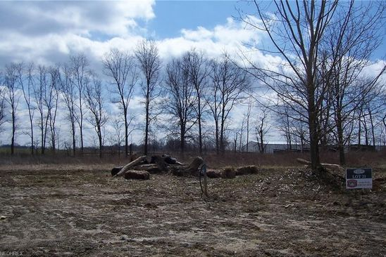 null bed null bath Vacant Land at 149 Juniper Dr Columbiana, OH, 44408 is for sale at 32k - google static map