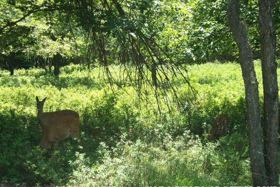 null bed null bath Vacant Land at FVI84 Kilmer Trl Albrightsville, PA, 18210 is for sale at 8k - google static map