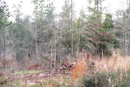 null bed null bath Vacant Land at  Osprey Ln Robertsdale, AL, 36567 is for sale at 59k - google static map