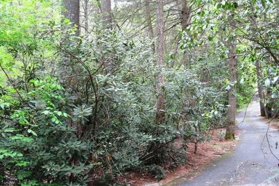 null bed null bath Vacant Land at  Potter Ln Highlands, NC, 28741 is for sale at 150k - google static map