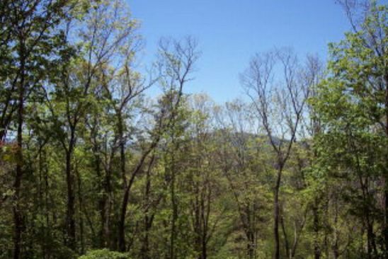 null bed null bath Vacant Land at  N/A Bryson City, NC, 28713 is for sale at 40k - google static map