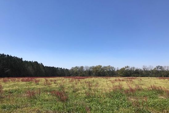 null bed null bath Vacant Land at 124 Arbordale Cir Cairo, GA, 39828 is for sale at 16k - google static map