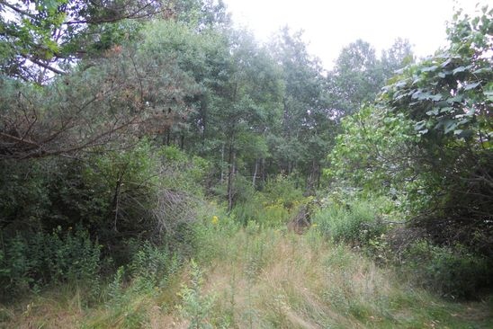 null bed null bath Vacant Land at  Gravel Pond Rd Glenburn Twp, PA, 18411 is for sale at 194k - google static map