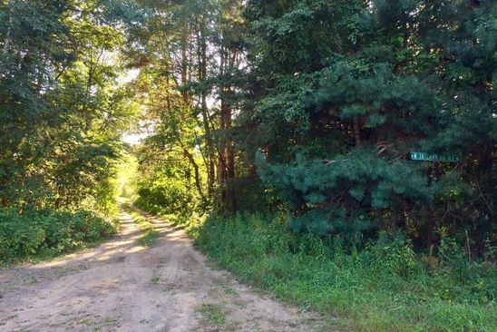 null bed null bath Vacant Land at  Parcel E Skylark Dr NE East Bethel, MN, 55011 is for sale at 150k - google static map