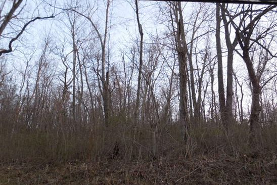 null bed null bath Vacant Land at 0 Possum Hollow Rd Stella, MO, 64867 is for sale at 88k - google static map