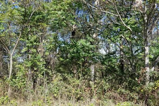 null bed null bath Vacant Land at 1822 Charlestown Sq Vinton, VA, 24179 is for sale at 37k - google static map