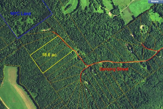 0 bed null bath Vacant Land at  Dancing St Bloomville, NY, 13739 is for sale at 40k - google static map