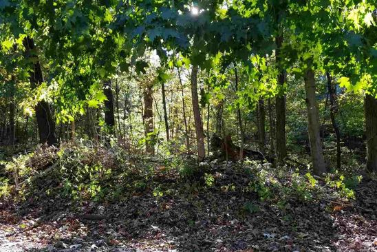 null bed null bath Vacant Land at 891 Fair Haven Dr Varna, IL, 61375 is for sale at 4k - google static map