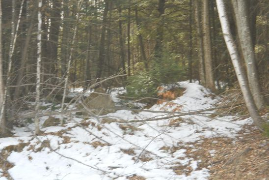 null bed null bath Vacant Land at 0 Cr-3 Long Lake, NY, 12847 is for sale at 32k - google static map