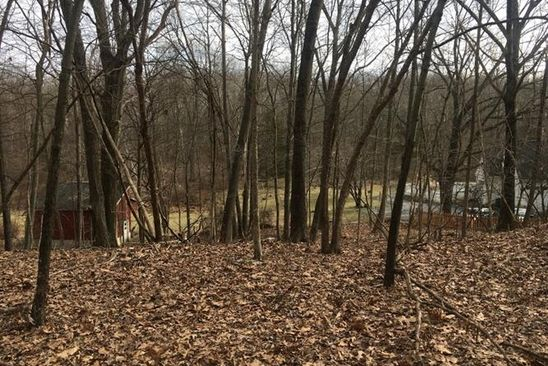 0 bed null bath Vacant Land at 130 Goodale Rd Newton, NJ, 07860 is for sale at 79k - google static map