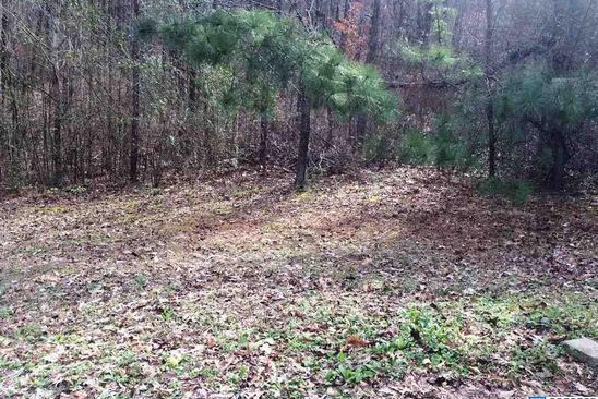 0 bed null bath Vacant Land at  Lisa Ann Dr Leeds, AL, 35094 is for sale at 15k - google static map