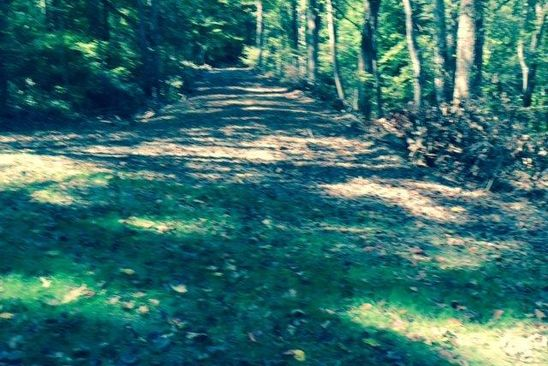 null bed null bath Vacant Land at 12 Ac Old Sand Rd Schuyler, VA, 22969 is for sale at 38k - google static map