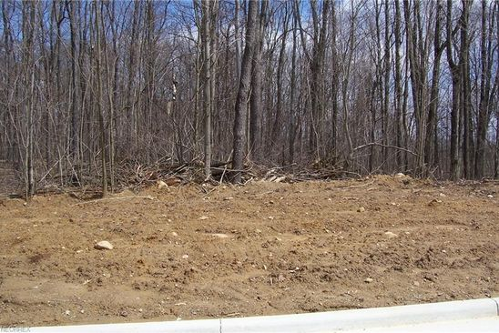 null bed null bath Vacant Land at 170 Hawkins Ln Columbiana, OH, 44408 is for sale at 32k - google static map