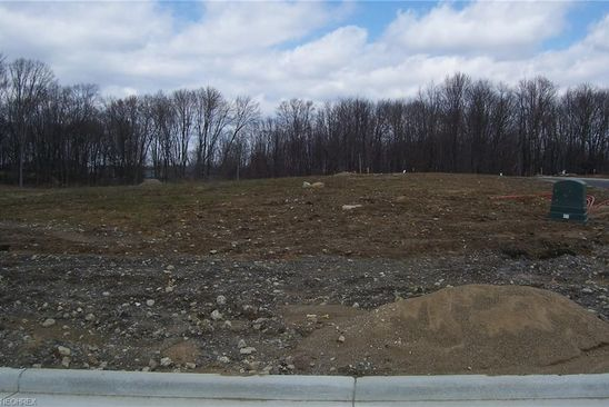 null bed null bath Vacant Land at 162 Juniper Dr Columbiana, OH, 44408 is for sale at 36k - google static map