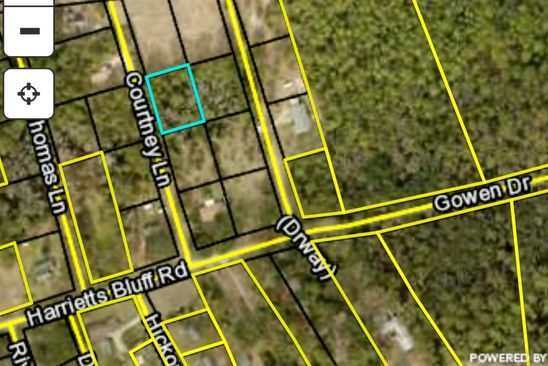 null bed null bath Vacant Land at 0 Courtney Ln Woodbine, GA, 31569 is for sale at 28k - google static map