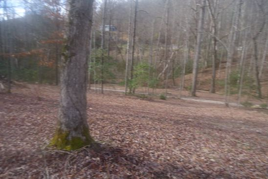 null bed null bath Vacant Land at  Franklin grove church Rd Bryson city, NC, 28713 is for sale at 35k - google static map