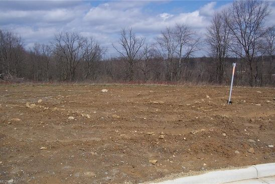 null bed null bath Vacant Land at 184 Juniper Dr Columbiana, OH, 44408 is for sale at 36k - google static map