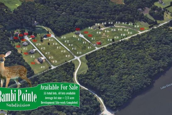 null bed null bath Vacant Land at 1 Bambi Pointe Oakley, IL, 62501 is for sale at 800k - google static map