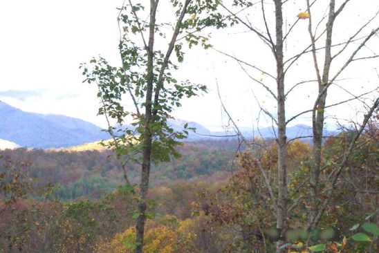 null bed null bath Vacant Land at 0 Sawyer Cove Hideaway Robbinsville, NC, 28771 is for sale at 30k - google static map